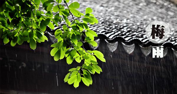 当2018梅雨季来临 全城湿哒哒模式开启 你准备好了吗?