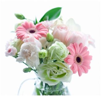 梅雨季节买什么鲜花比较好保存?