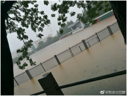 景德镇暴雨,网友:我可能需要买条船