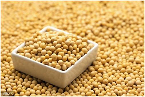 豆类食品的防潮储存